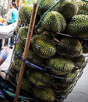02_Durian