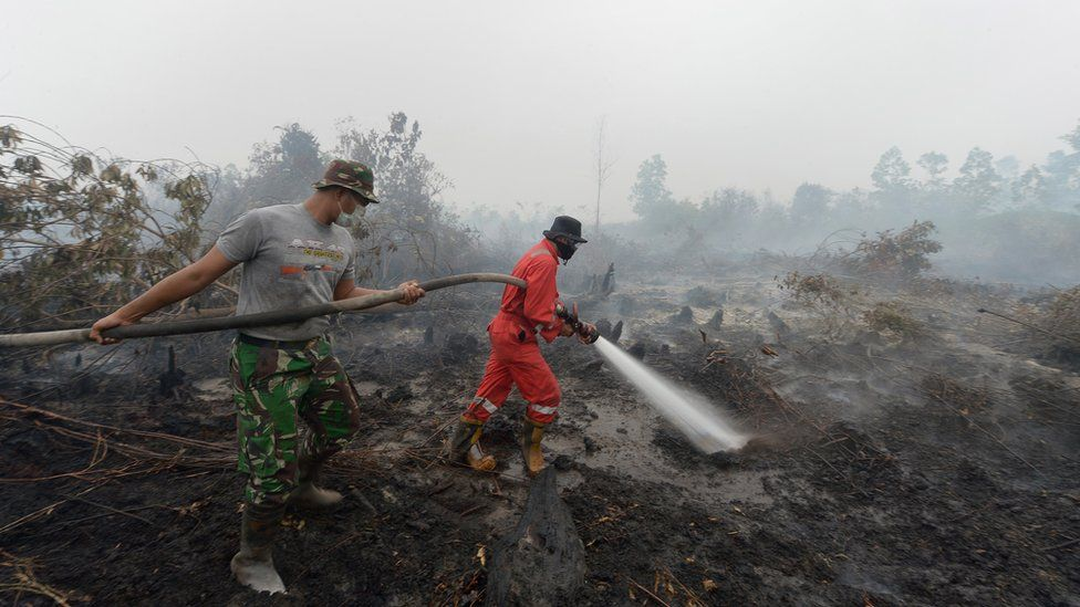 Firemen have been putting out fires in Riau province on Sumatra island, as well as areas in south Kalimantan island