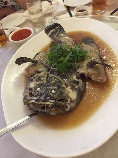 Steamed Tiger Grouper Fish with soy sauce